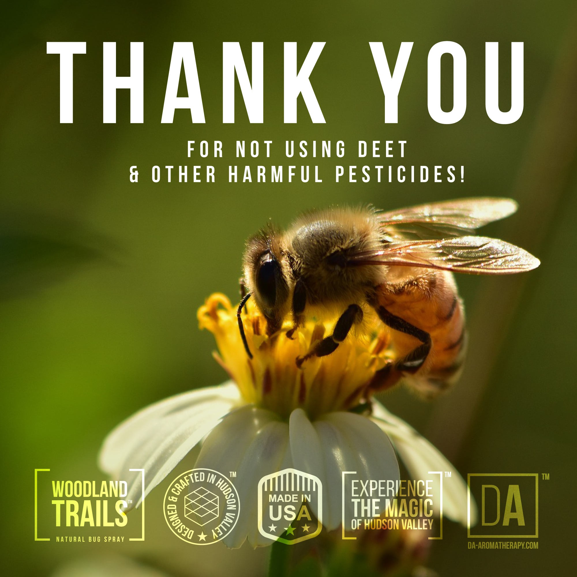 Help us save the honeybees and raise the awareness of dangers of DEET and other pesticides! #savethebees