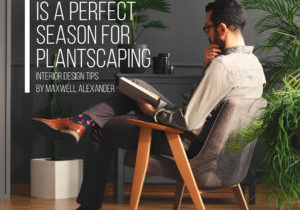 Winter is a great time to make your home come to life – Interior Design and Plantscaping Tips from designer Maxwell Alexander